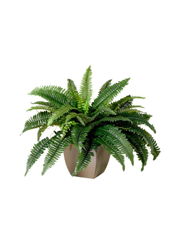 Plante artificielle de type foug re et son pot helline for Type de plante