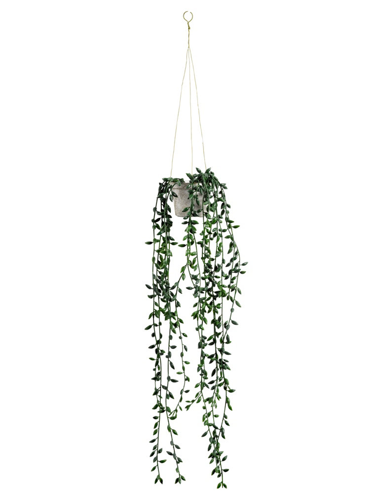Plante tombante artificielle dans pot suspendre helline for Plante tombante