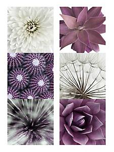 helline home - Tableau à patchwork de fleurs en dytique, lot de 2