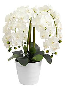 helline home - Orchidée synthétique décorative en pot uni moderne
