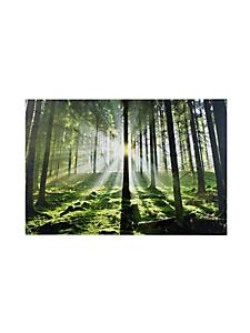 """helline home - Tableau """"forêt à contre-jour"""""""